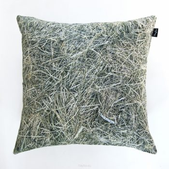 , HAY PILLOW - big hay cushion 40x40 350x350