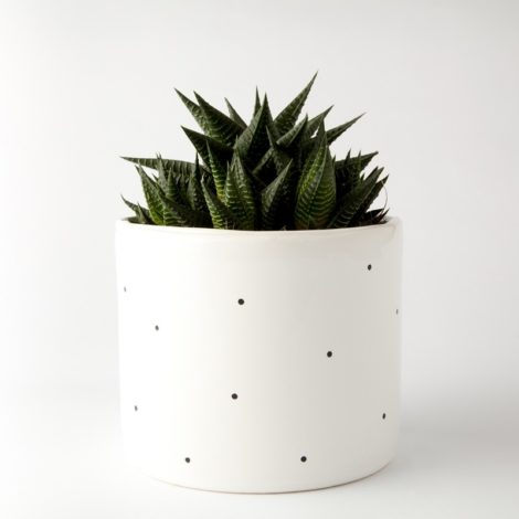 , LARGE FLOWER POT | DOTTED - 304 1563671526 470x470