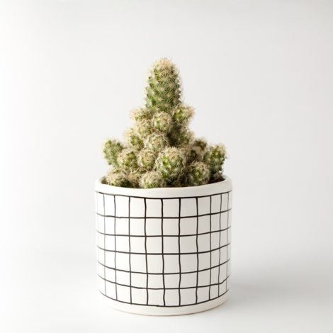 , SMALL FLOWER POT | CHECKED - 304 2444224522 470x470