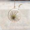 vases, interior-design, glass, GLASS BALL S - QY1C8086 100x100