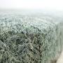 , HAYKA HAY FITTED SHEET - bedsheet hay closeup 90x90