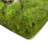 wohntextilien, wohnen, spannbettlacken, hochzeitsgeschenke, greenery, HAYKA MOOS SPANNBETTLAKEN - bedsheet moss corner 100x100