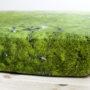 , HAYKA MOOS SPANNBETTLAKEN - bedsheet moss corner 2 90x90