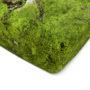, HAYKA MOOS SPANNBETTLAKEN - bedsheet moss corner 90x90