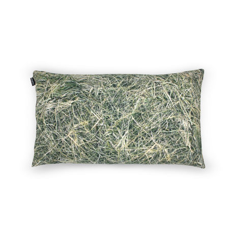 , HAY PILLOW FILLED WITH BUCKWHEAT HULL - HAY buckwheat 50x30 1 470x470