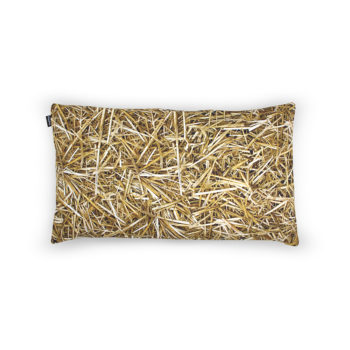 , HAYKA STRAW PILLOW FILLED WITH BUCKWHEAT HULL - STRAW buckwheat 50x30 1 350x350