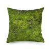 wohntextilien, wohnen, kissen-und-kissenbezuege, hochzeitsgeschenke, greenery, HAYKA MOOS KISSEN - mech cushion 40x40  100x100