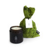 home-accessories, interior-design, candles, FOREST - SCENTED SOY CANDLE - candle forest packshot 100x100