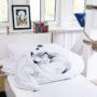 , KIDS BED LINEN SLEEPING WOLF - wilk 3 90x90