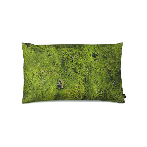 , MOSS PILLOW FILLED WITH BUCKWHEAT HULL - moss 50x30 packshot 470x470