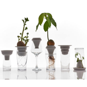 porcelain_and_ceramics, others, interior-design, PLANTATION - plantation set 2 350x350