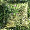 wohntextilien, wohnen, kissen-und-kissenbezuege, HAYKA ALPENWIESE KISSENBEZUG - Alpine Meadow pillows 4 100x100