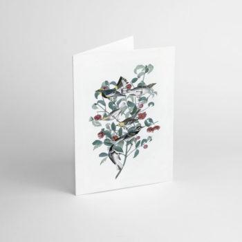 postkarten-und-grusskarten, papierartikel, GRUßKARTE FLOWER V - JJ 1 e1539189908989 350x350
