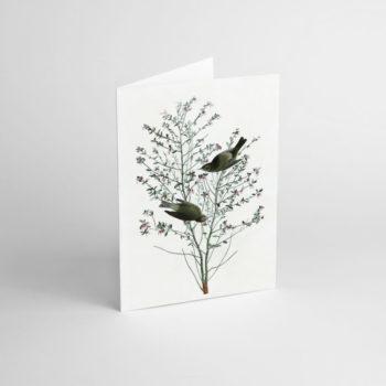 postkarten-und-grusskarten, papierartikel, GRUßKARTE FLOWER V - JJ 4 e1539189971880 350x350
