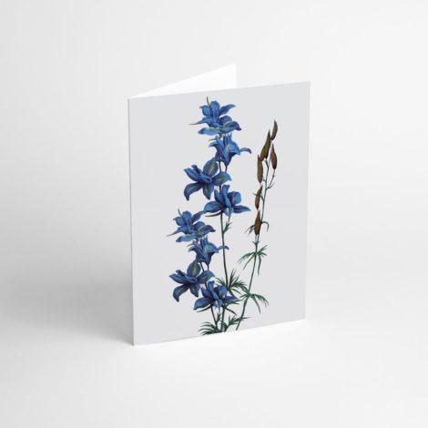 postkarten-und-grusskarten, papierartikel, GRUßKARTE FLOWER I - Flower I 470x470
