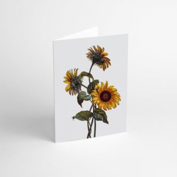 postcards-and-greeting-cards, paper-goods, GREETING CARD FLOWER II - Flower II 350x350