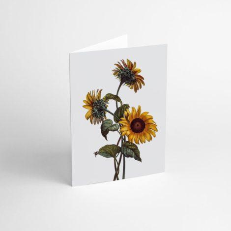 postkarten-und-grusskarten, papierartikel, GRUßKARTE FLOWER II - Flower II 470x470