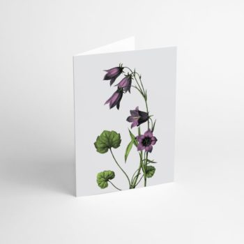 postcards-and-greeting-cards, paper-goods, GREETING CARD FLOWER IV - Flower IV 350x350