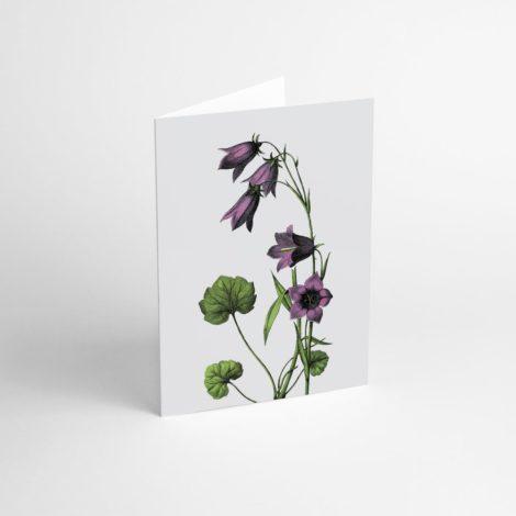 postkarten-und-grusskarten, papierartikel, GRUßKARTE FLOWER IV - Flower IV 470x470