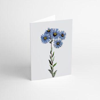 postcards-and-greeting-cards, paper-goods, GREETING CARD FLOWER V - Flower V 350x350