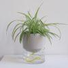 home-accessories, interior-design, flower-pots, FLOWER POT KAPI PEBBLE BIG - Kapi DJ plant 04 1000x667 100x100