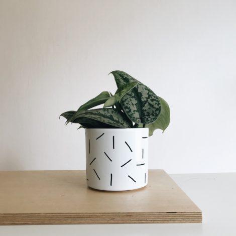 home-accessories, interior-design, flower-pots, FLOWER POT NEEDLES 13CM - igielki13 470x470