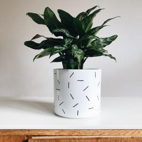 home-accessories, interior-design, flower-pots, FLOWER POT NEEDLES 19CM - igielki19 470x470