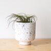 home-accessories, interior-design, flower-pots, FLOWER POT GREY TERRAZZO LARGE - QY1C9587 100x100