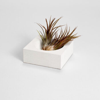 interior-design, home-accessories, holders-and-trays, GEOMETRICAL CONCRETE HOLDER WHITE - il 1588xN.2293092116 crlu 350x350