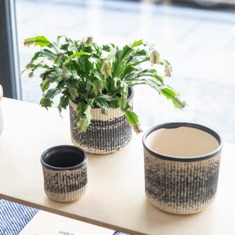 home-accessories, interior-design, flower-pots, FLOWER POT BLACK DOTS - QY1C9900 470x470