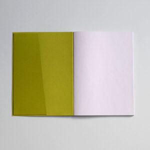 , lekki_notebook_kiwi_01 (1) - lekki notebook kiwi 01 1 300x300