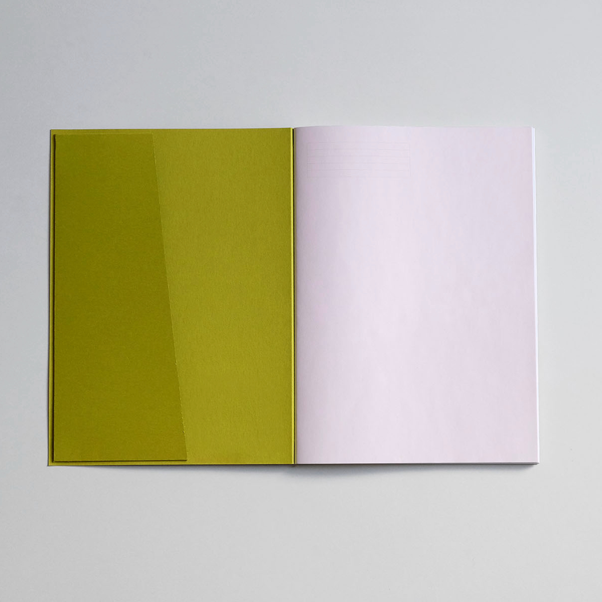 lekki_notebook_kiwi_01 (1)