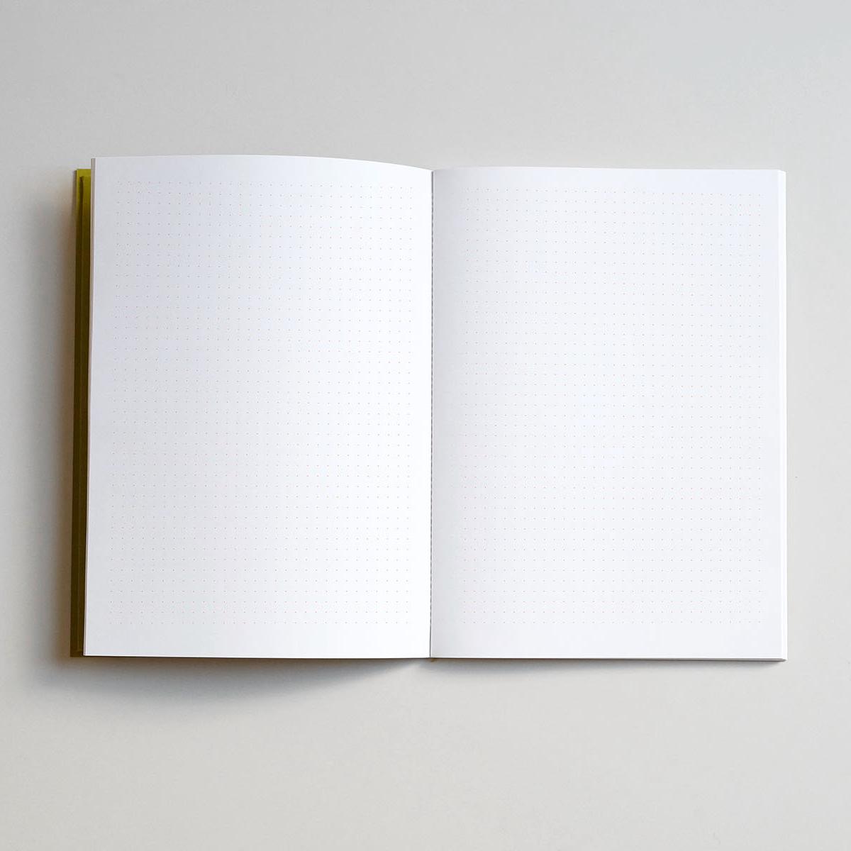 lekki_notebook_kiwi_03
