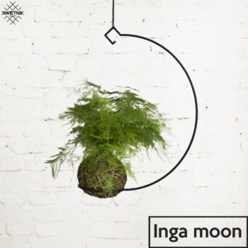 plant-stands, interior-design, home-accessories, SUSPENDED KOKEDAMA HOLDER INGA MOON - KWIETNI INGA MOON 350x350