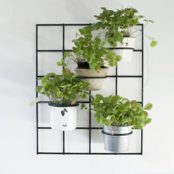 plant-stands, interior-design, home-accessories, HANGING FLOWER POT HOLDER BASIA - KWIETNIK BASIA 350x350