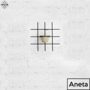 , KWIETNIK_ANETA_Z_OPISEM - KWIETNIK ANETA Z OPISEM 300x300