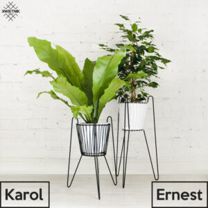 , KWIETNIK_ERNEST_I_KAROL - KWIETNIK ERNEST I KAROL 300x300