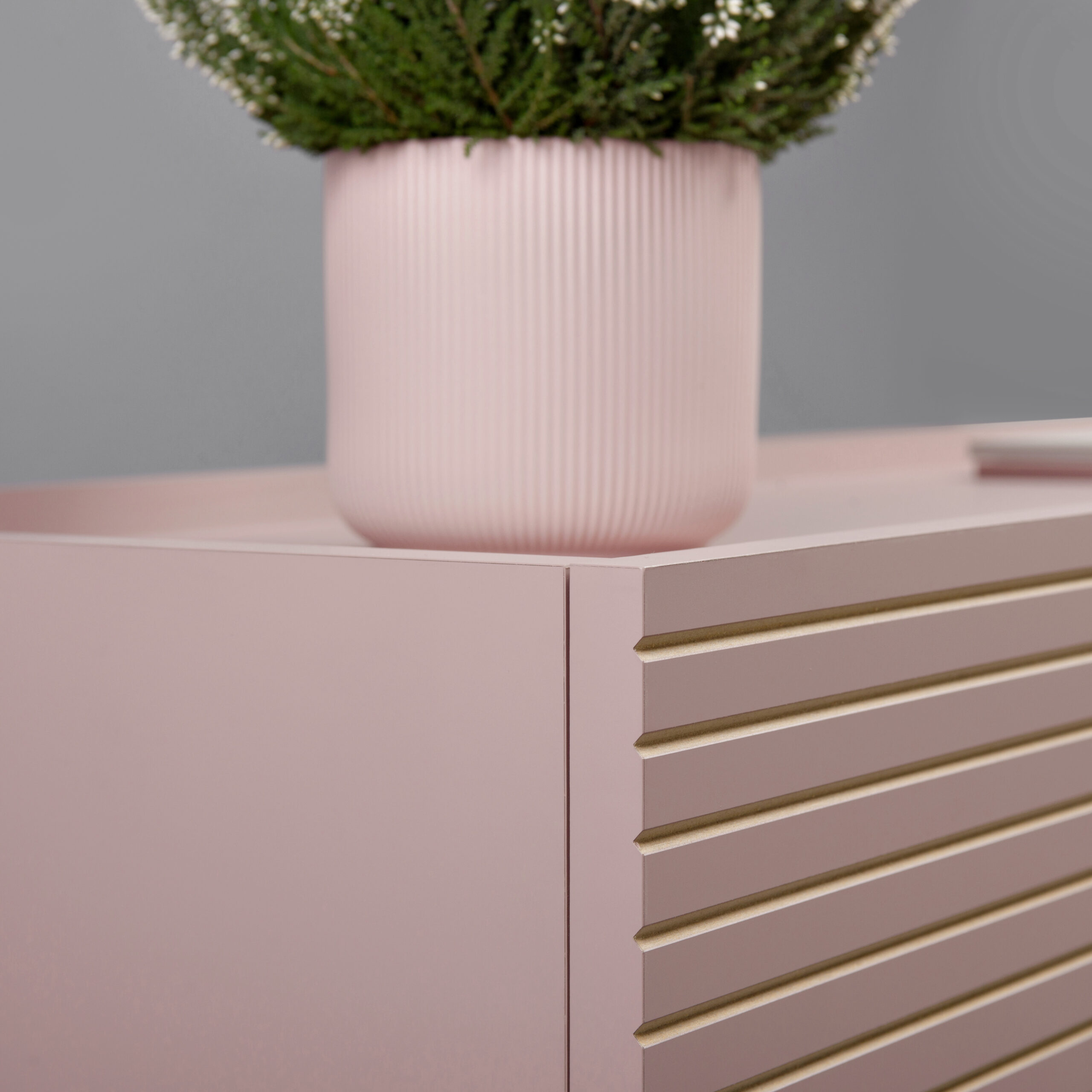 orto_pink 1